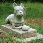 Burying Pet In Backyard : 50 US States Pet Burial Law - 10 Interesting State Rules
