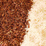 Can Dogs Eat Uncooked Rice? (7 Brutal Health Issues)