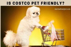 Is costco pet friendly